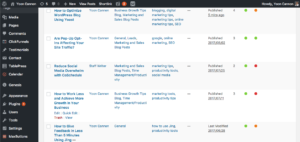 Optimize WordPress Blog Screen